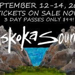 wordburglar-to-play-muskoka-sound-music-festival