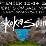 wordburglar-to-play-muskoka-sound-music-festival